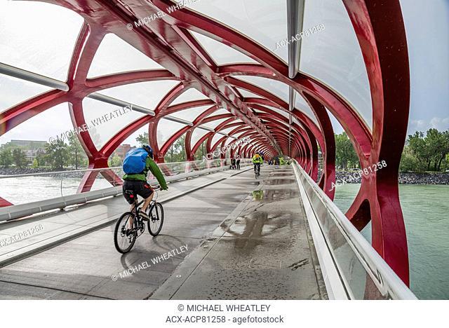 The Peace Bridge, Calgary, Alberta, Canada