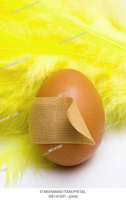 egg with wound plaster