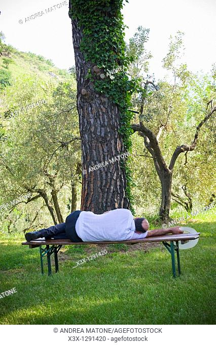 Man sleeping on bench in park
