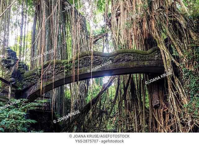 Monkey Forest, Ubud, Bali, Indonesia, Asia