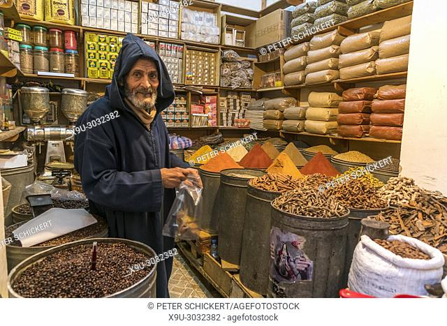 spice seller at the old souk, Fes, Kingdom of Morocco, Africa