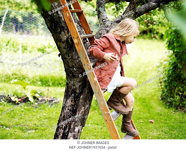 Girl in orchard, Varmdo, Uppland, Sweden