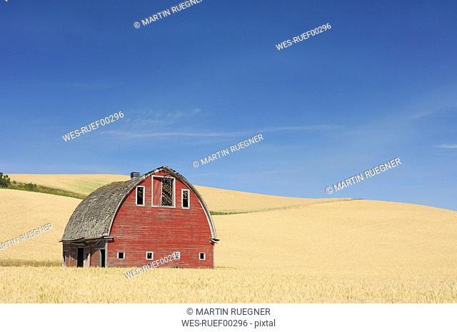 USA, Palouse, Whitman County, Washington State, Barn in field