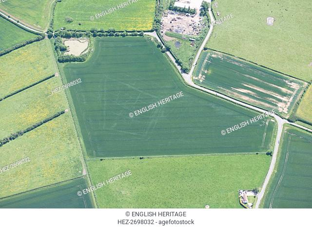 Double ditched enclosure cropmark, near Burgh le Marsh, Lincolnshire, 2015. Creator: Historic England Staff Photographer