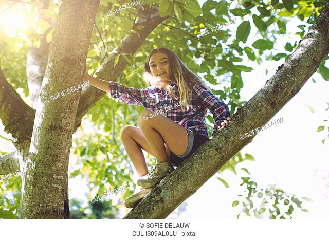 Girl sitting on branch of tree, low angle