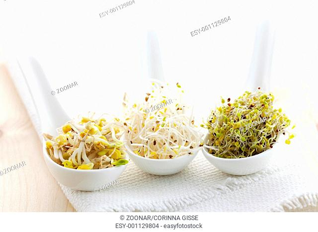 Sprossenmix / mix of sprouts