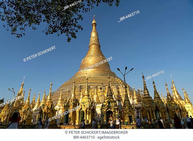 Shwedagon Zedi Daw, Shwedagon Pagoda, Yangon, Myanmar