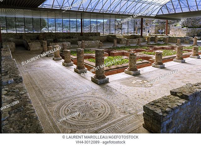Mosaic in the House of the Fountains (Casa dos Repuxos), Ruins of the Roman city of Conimbriga, Coimbra District, Baixo Mondego, Centro Region, Portugal, Europe