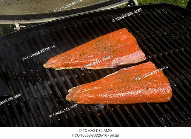 Barbecue scene, Salmon steaks on the grill