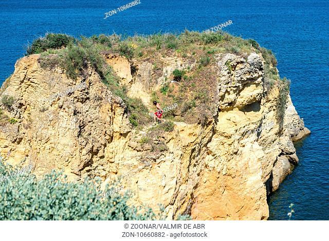 Sea gull attack in Batata beach, Lagos, Algarve, Portugal