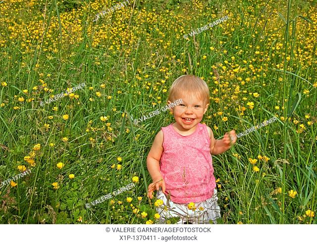 This cute Caucasian eighteen month old toddler girl is smiling and happy in long grass and buttercups  She's wearing a pink shirt and has blue eyes and blond...