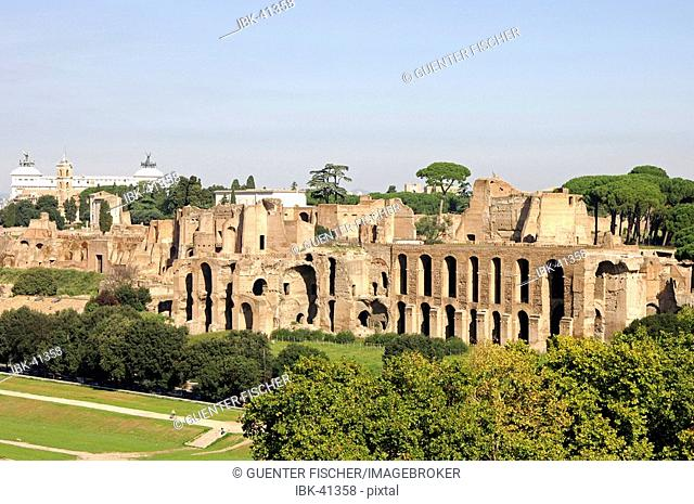 Ruins Palatine Hill Rome Italy