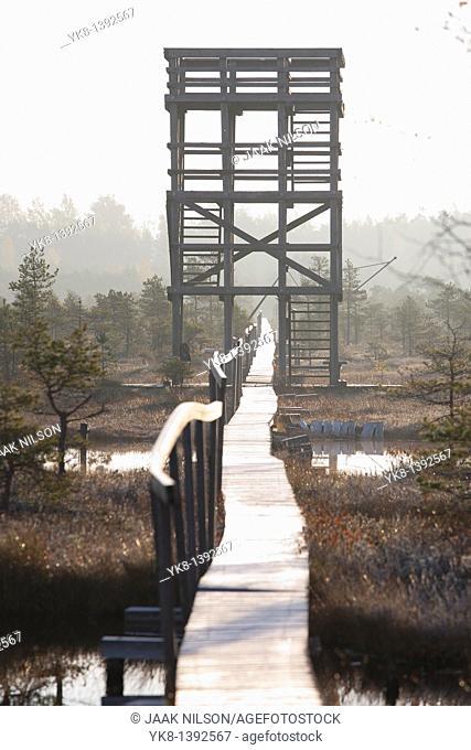 Wooden Watchtower and Boardwalk in Männikjärve Bog, Estonia