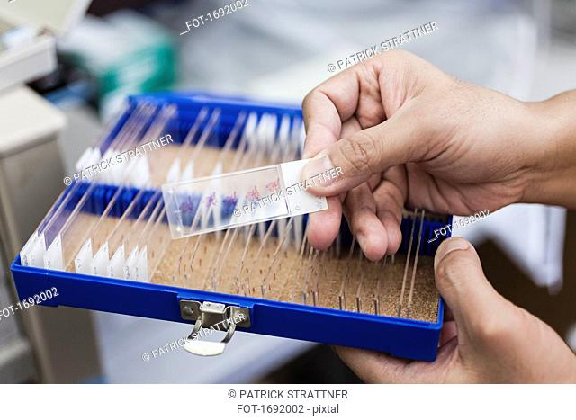 Cropped image of scientist holding microscope slide over box at laboratory