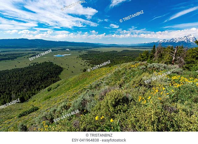 View from Signal Mountain, Grand Teton National Park, Wyoming