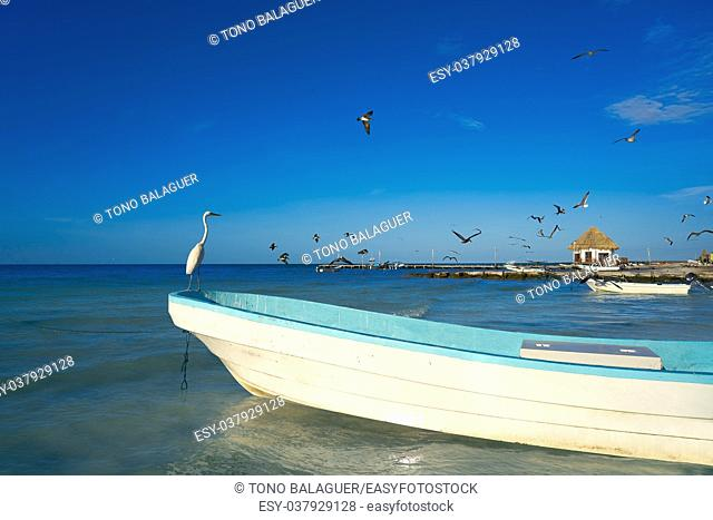 Holbox Island heron bird and boat in the beach Quintana Roo of Mexico