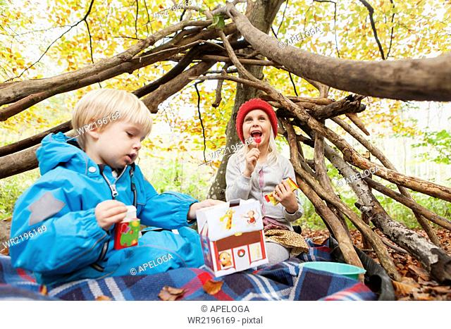 Happy siblings sitting in forest