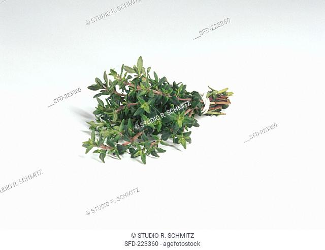 A bunch of thyme on a white background