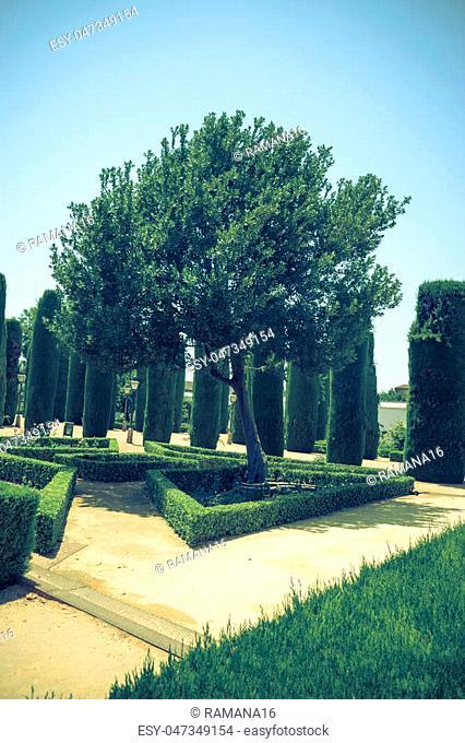 The jardines of the Alcazar de los Reyes Cristianos