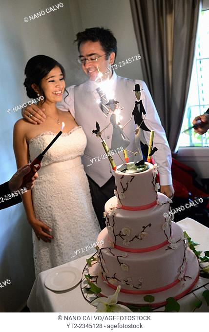 Just married couple with wedding cake