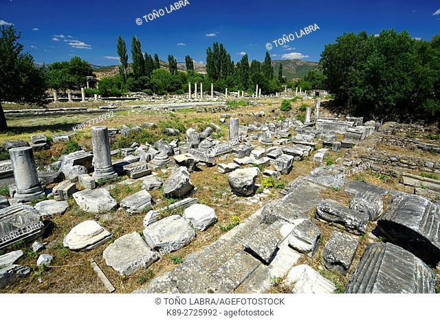 Temple of Aphrodite. Aphrodisias. Ancient Greece. Asia Minor. Turkey