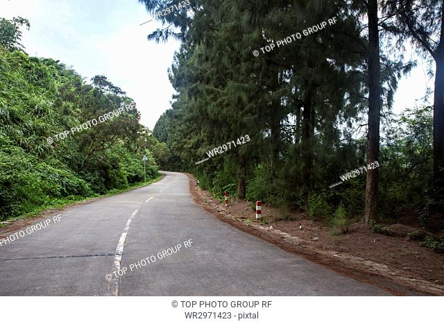Cement Road and Scenery