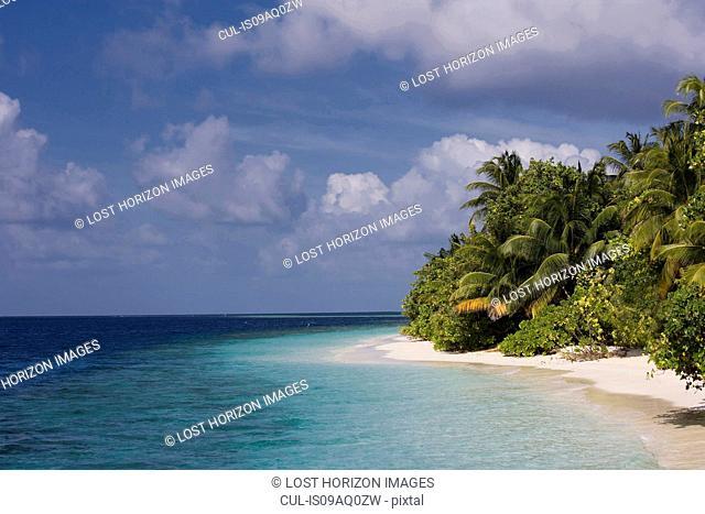 Empty beach on a tropical island, Vilamendhoo Island, Ari Atoll, Maldives