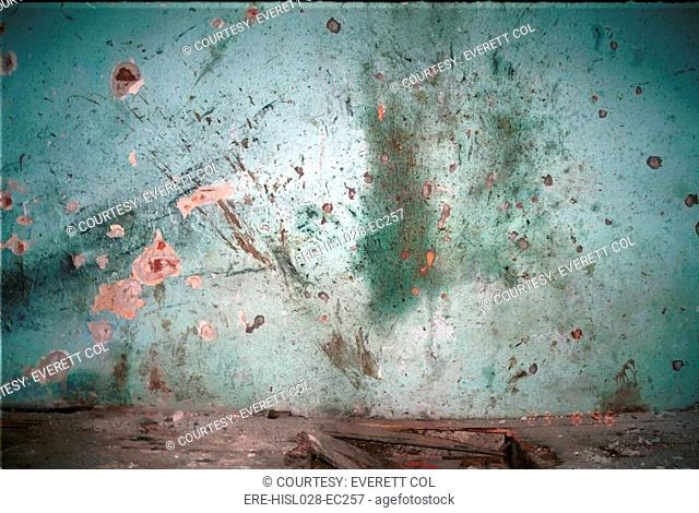 Bullet riddled wall of the Dom Kulture Culture Palace shows evidence of shooting in Pilica a village near Srebrenica Bosnia-Herzegovina