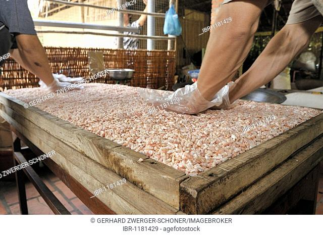 Men preparing puffed rice sweets, confectionery factory, Vinh Long, Mekong Delta, Vietnam, Southeast Asia
