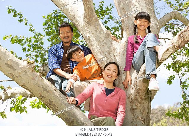 Family climbing tree together