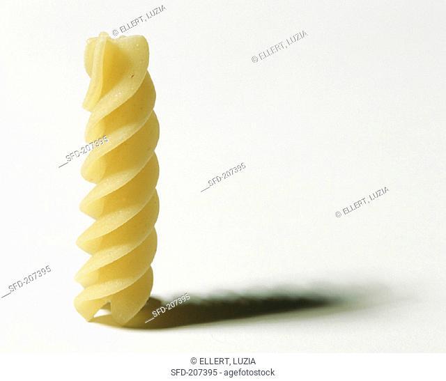 A Single Piece of Fusilli