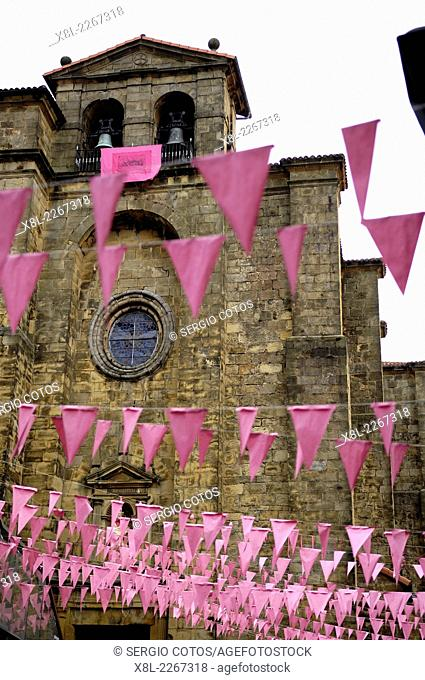 Pink bunting, Pasajes de San Juan, Basque Country, Spain