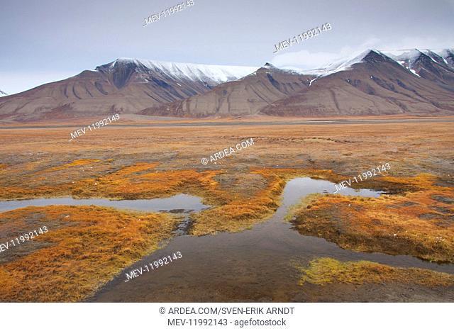 Landscape in autumn at Adventdalen - Longyearbyen - Svalbard, Norway