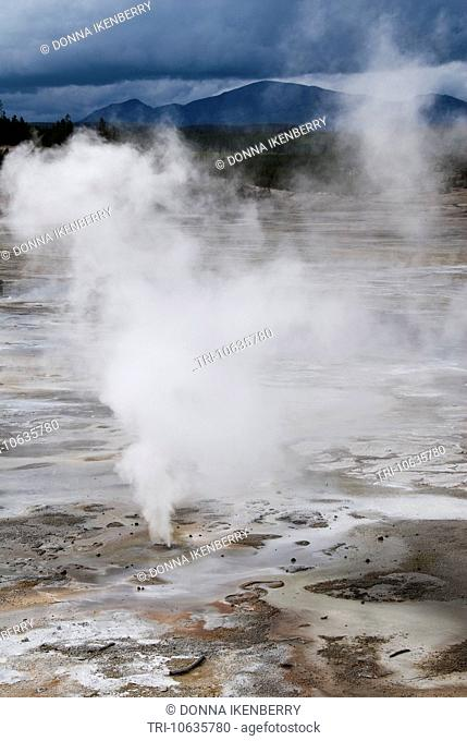 Porcelain Springs Norris Geyser Basin Yellowstone National Park Wyoming USA