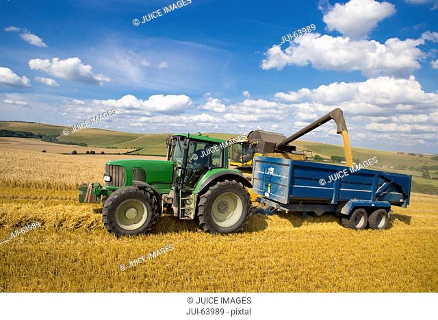 Combine harvester, harvesting wheat into trailer pulled alongside by tractor, in sunny rural field