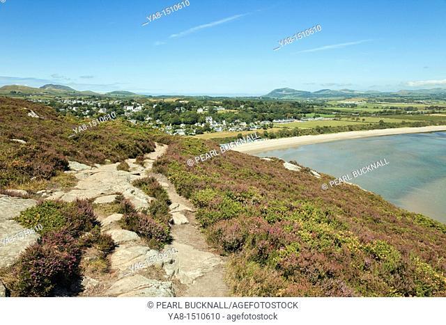 Llanbedrog, Lleyn Peninsula, Gwynedd, North Wales, UK, Britain, Europe  Flowering Heather and Gorse by path on Mynydd Tir-y-Cwmwd with view to beach in summer
