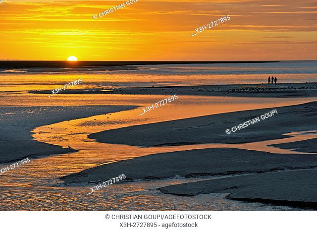 low tide at sunset in the Mont-Saint-Michel bay, Manche department, Normandy region, France, Europe