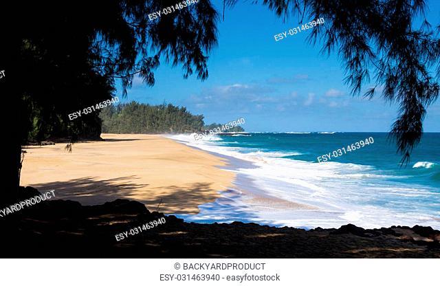 Dramatic Ful Waves Crash Onto Sand On Dangerous Beach At Lumaha I Kauai