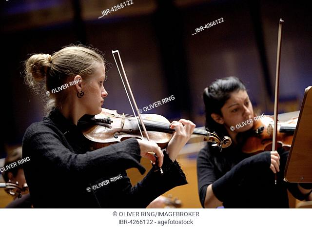 Violinists playing in an orchestra, Robert Schumann conservatory, Düsseldorf, North Rhine-Westphalia, Germany