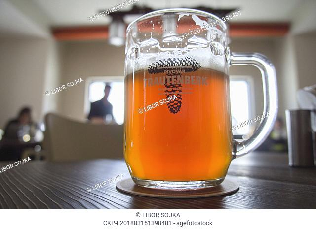 light lager, beer glass, half litre, Trautenberk Brewery, on March 3, 2018. (CTK Photo/Libor Sojka)