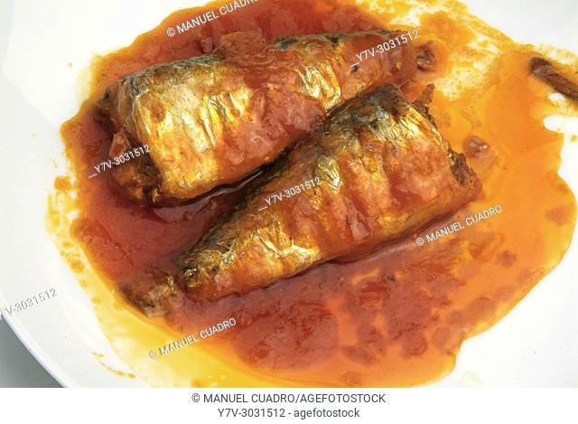 Spanish cuisine: Sardines in spicy sauce