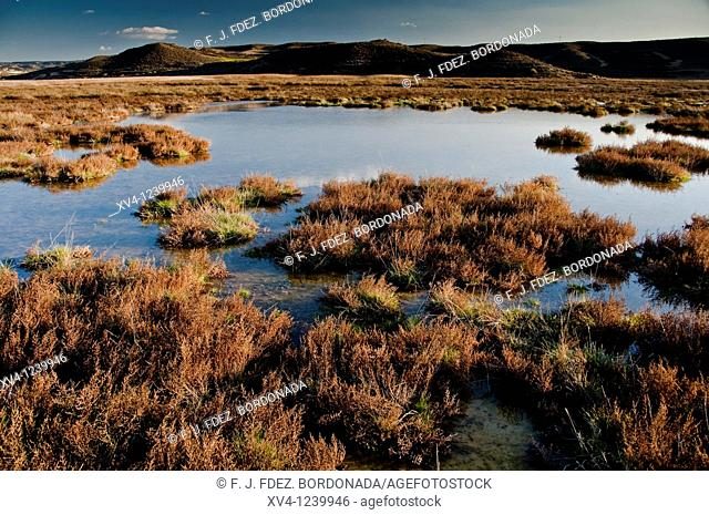 Pool in Monegros Steppes landscape  Aragon  Spain  Europe