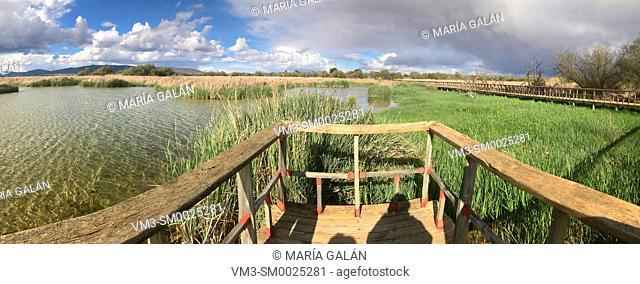 Tablas de Daimiel National Park, panoramic view. Ciudad Real province, Castilla La Mancha, Spain