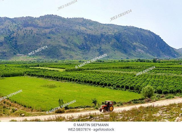 Albania, Vlore County, Konispol, tractor and plantations