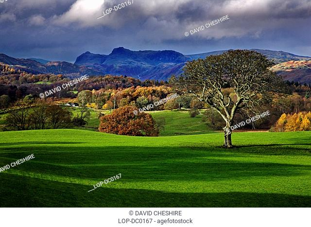 The view across the grounds of Wray Castle towards the Langdale Pikes. Wray is not a real castle but a private house built in1840 in the Gothic Revival Style