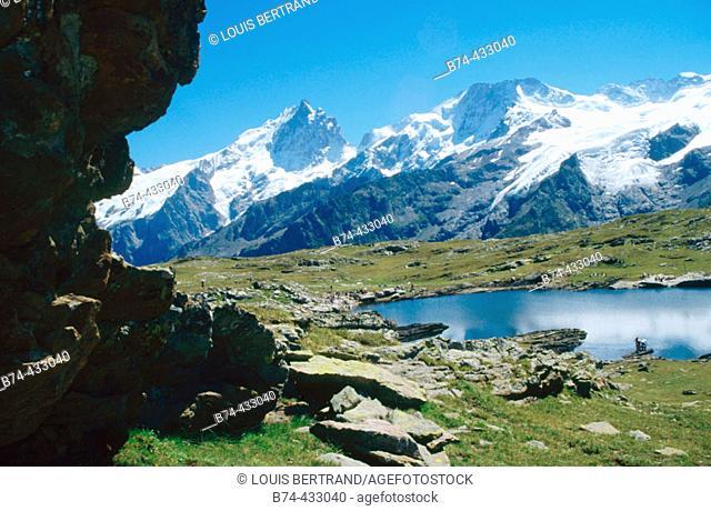 Plateau d'Emparis. Hautes-Alpes, France