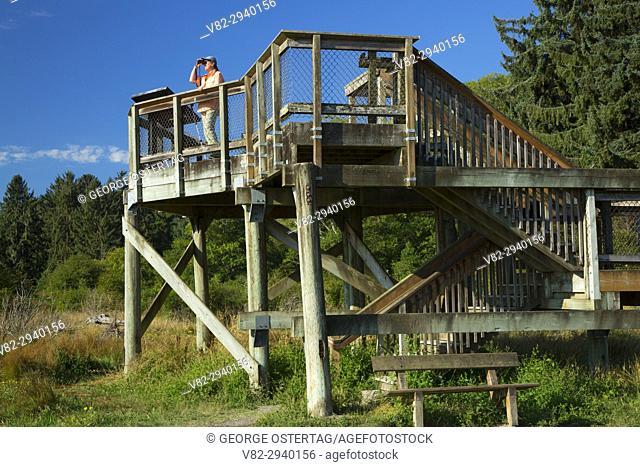 Hood Canal observation platform, Dosewallips State Park, Washington