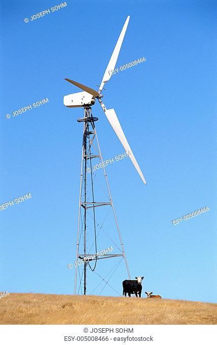 Wind turbine with cows