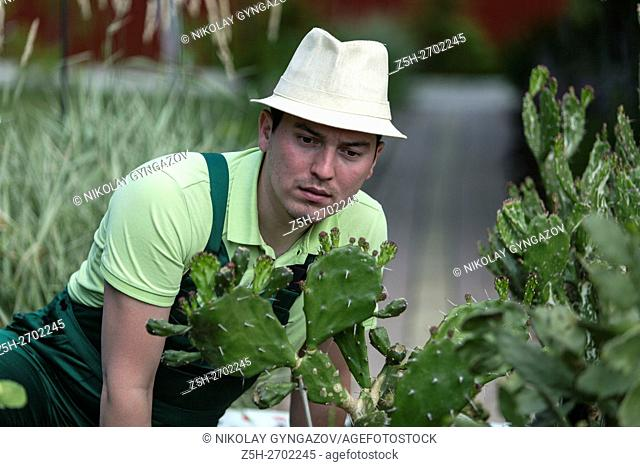 Russia. Belgorod region. Young man in the summer garden