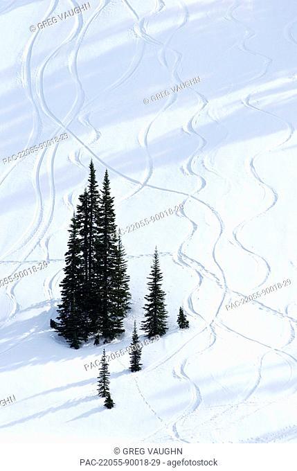 Washington, Mount Rainier National Park, Paradise Valley, Ski trails down snow-covered hill